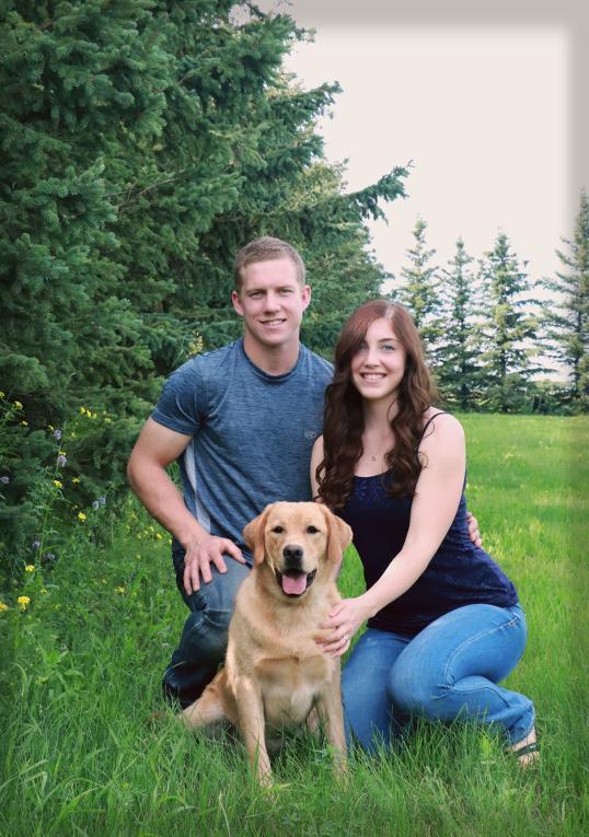 Starstruck Labradors | Labrador Breeder Alberta, Lab Puppies for Sale